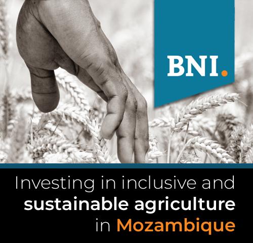 BNI Mozambique